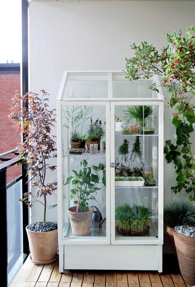 Gør din altan til en grøn oase - ChriChri