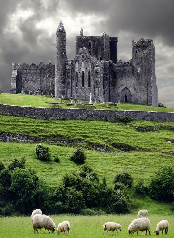 The Rock of Cashel is the Ireland's most spectacular archaeological site. The 'Rock' is a prominent green hill, banded with limestone outcrops. It rises from a grassy plain on the edge of the town and bristles with ancient fortifications.
