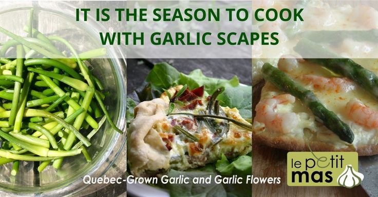 It is the season to cook with garlic scapes. 6 easy recipes.