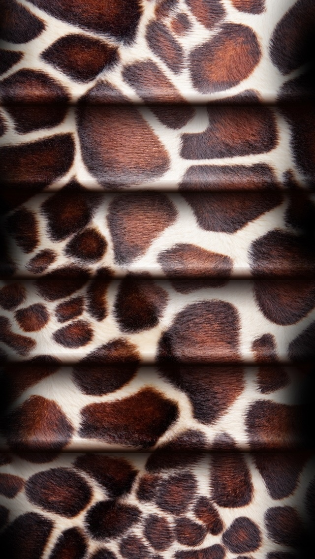 Wallpapers Animal Print: 230 Best Images About Leopard On Pinterest