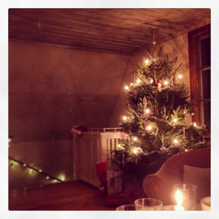 Julgranen i Solbacken