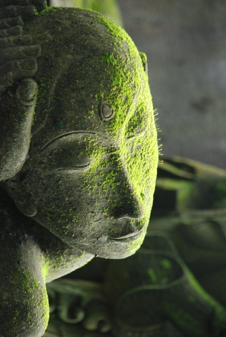 ♂ green world A moss covered stone statue with palms holding its broken head.