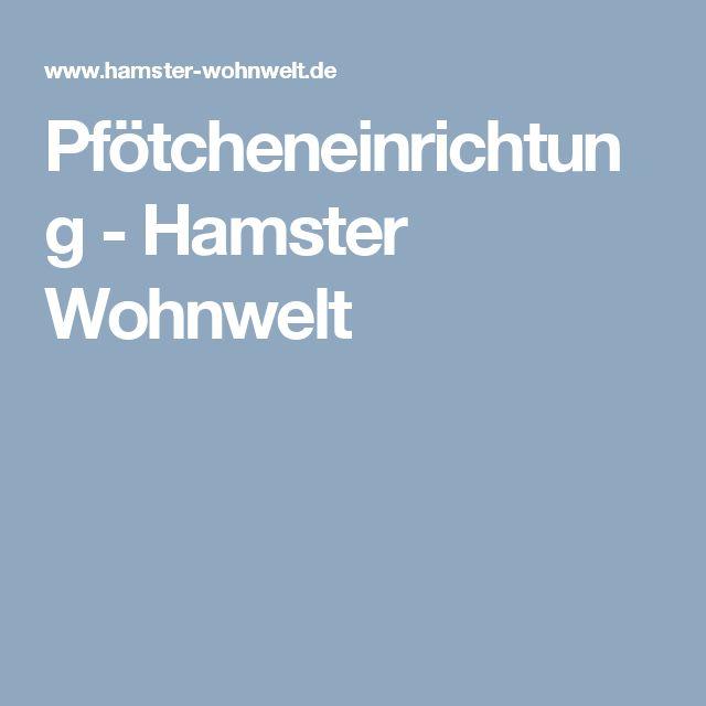Pfötcheneinrichtung - Hamster Wohnwelt