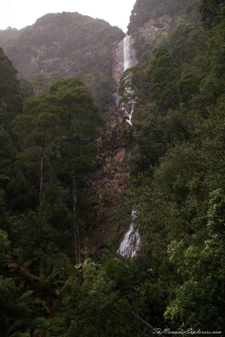 Tasmania, Walk to Montezuma Falls near Rosebery