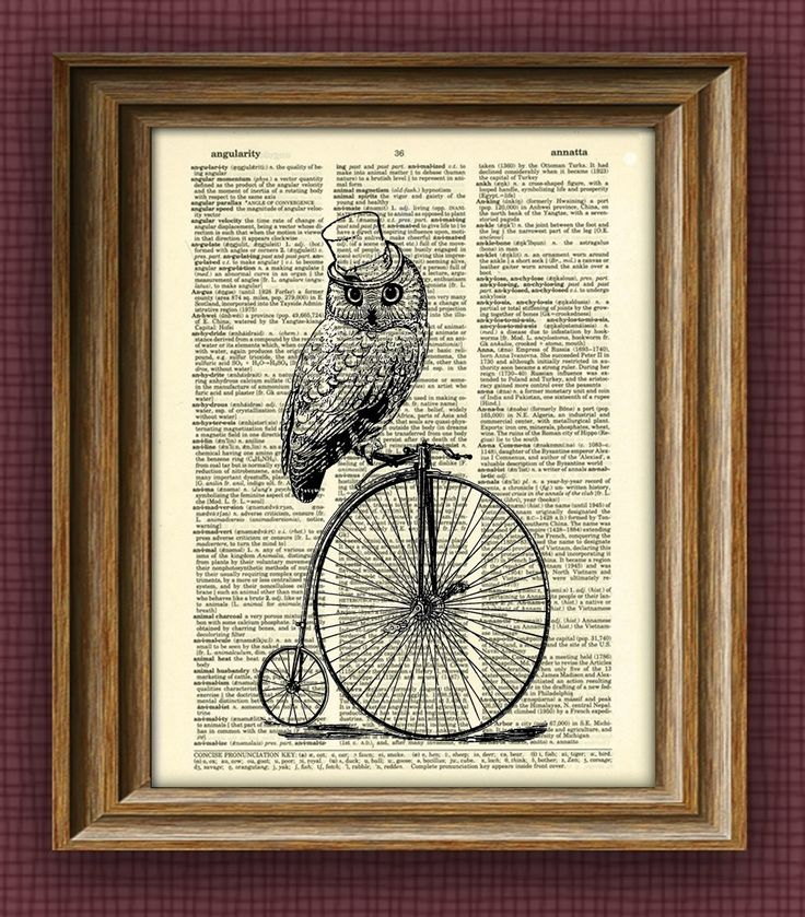 TOP HAT OWL on a Penny Farthing Bicycle bike print over an upcycled vintage dictionary page book art. $7.99, via Etsy.