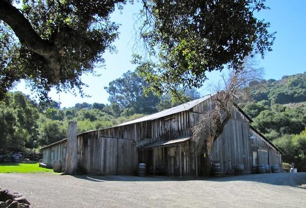 Picchetti Winery, Cupertino, California