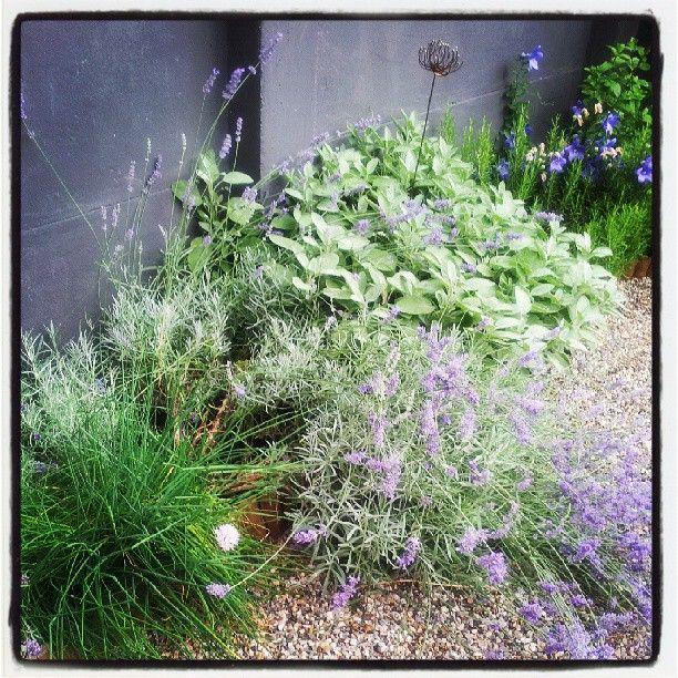 "@stilepersonale's photo: ""My secret garden #garden#colors"""