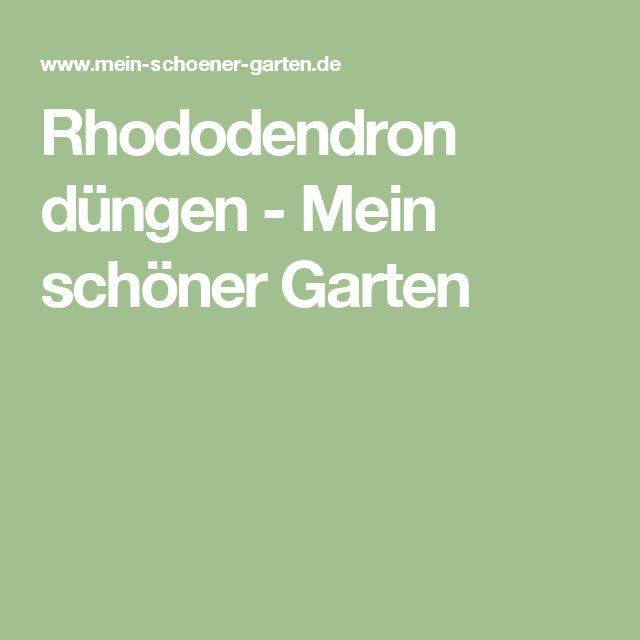 Rhododendron düngen - Mein schöner Garten