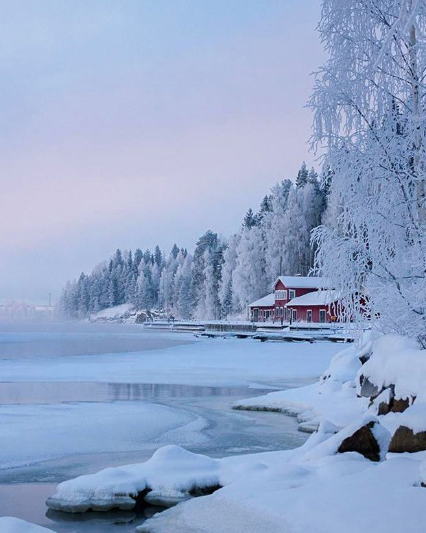 Winter Beauty - Finland
