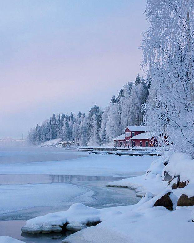 Winter Beauty - Finland