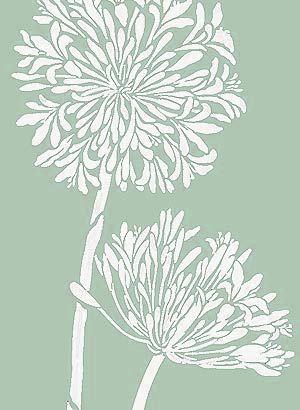 Agapanthus Stencil African Lily Flower Stencil