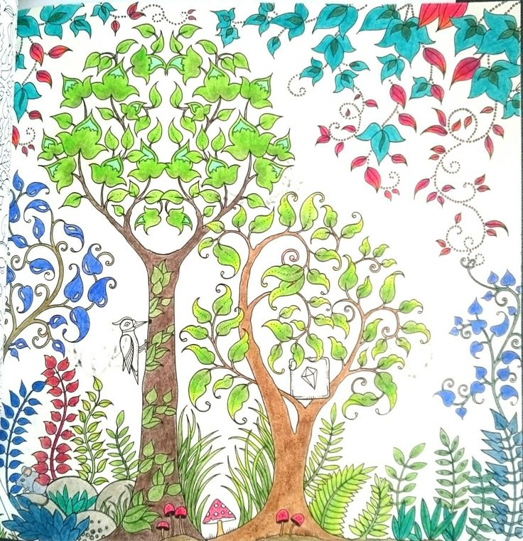 Johanna Basford Secret garden colored with koh-i-noor polycolor
