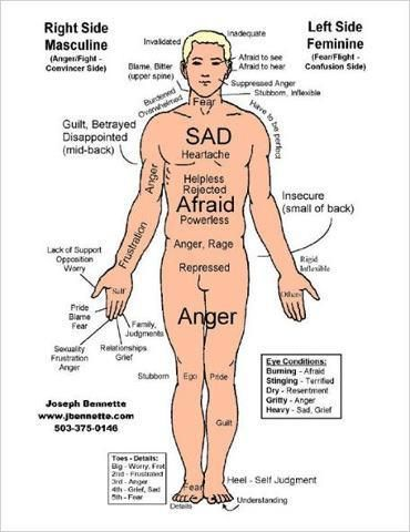 Where you store your emotions in your Physical Body