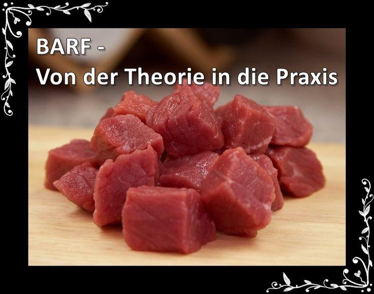 BARFEN - Von der Theorie in die Praxis Im ersten Teil hatten Gastautorin Gabriele Tischler von der PfotenBar Düsseldorf davon bereichtet, was barfen eigentlich ist, wie es gemacht wird, was wo drin steckt und wie es sich zusammensetzt. Hier der erste Beitrag zum ThemaBARF - was ist
