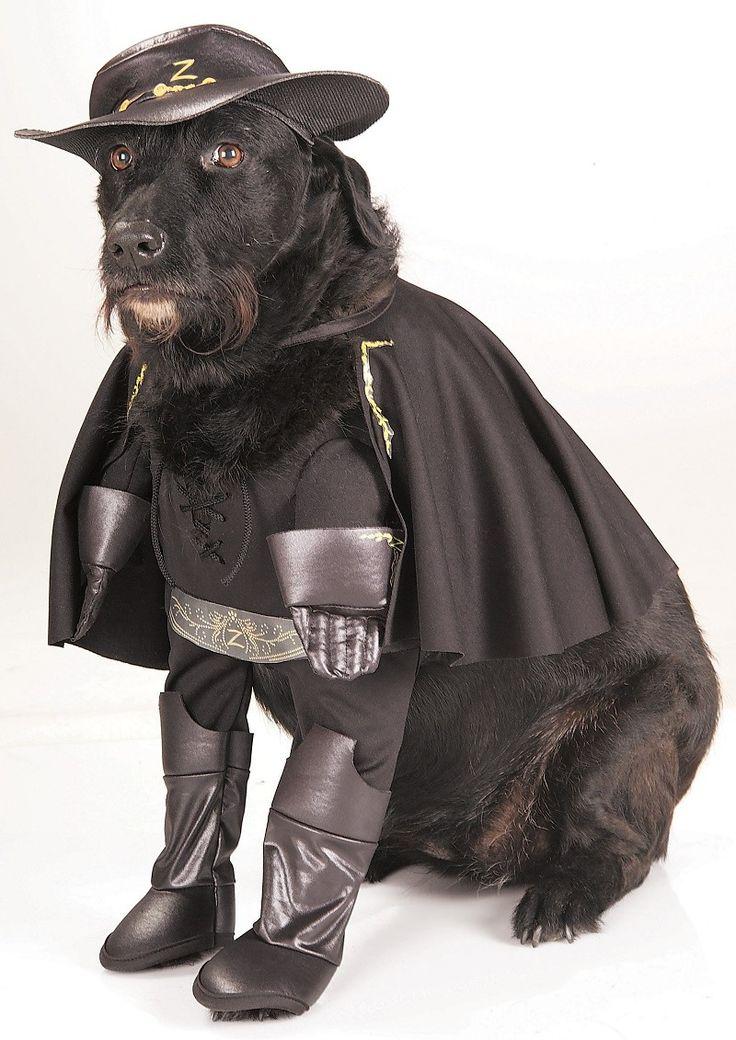 Perros disfrazados de Superheroes (con imágenes) Perros