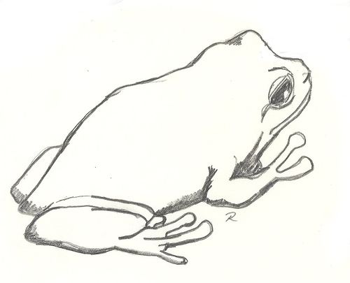 draw a frog how to draw and paint a frog http