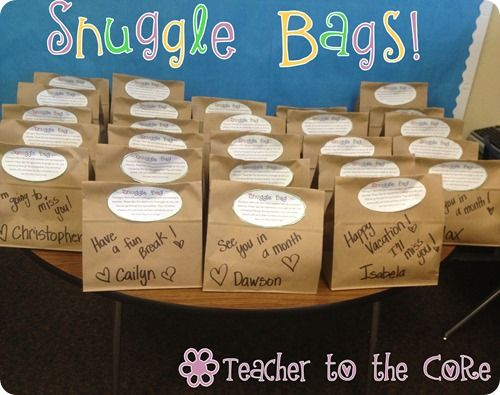 Snuggle Bag... a perfect way to send home work at the end of the year !!!!