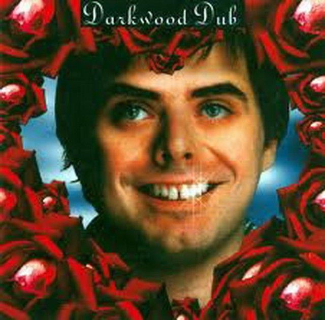 Saved on Spotify: Sila by Darkwood Dub