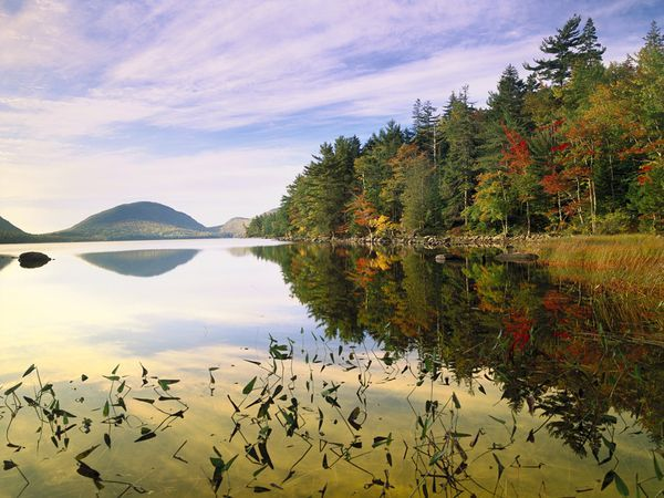 Eagle Lake, Maine    Photograph by Tim Fitzharris/Minden Pictures    Autumn's grandeur spreads across Eagle Lake on Mount Desert Island, one of several coastal islands that make up Acadia National Park in Maine. Eagle Lake, which supplies water to nearby Bar Harbor, is deep, clear, and relatively free of plant life.
