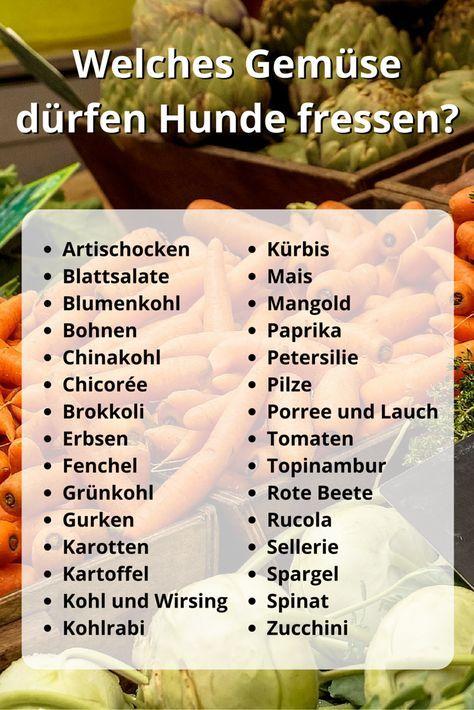 Welches Gemüse dürfen Hunde fressen? 32 gesunde Gemüsesorten – Norbert Weyers