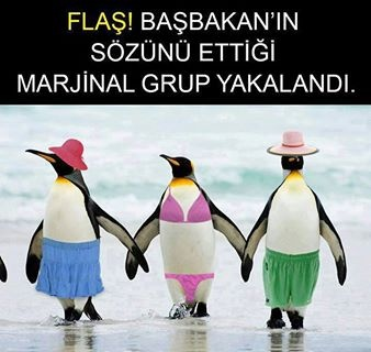Taksim Gezi Parkı marjinalleri :)))))