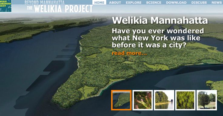 "The Welikia Mannahatta Project, developed by Eric Sanderson  and the Wildlife Conservation Society, ""un-covered the original ecology of [New York City]... Welikia ... means 'my good home' in Lenape, the Native American language of the New York City region at the time of first contact with Europeans. ... Welikia provides the basis for all the people of New York to appreciate, conserve and re-invigorate the natural heritage of their city no matter which borough they live in."""