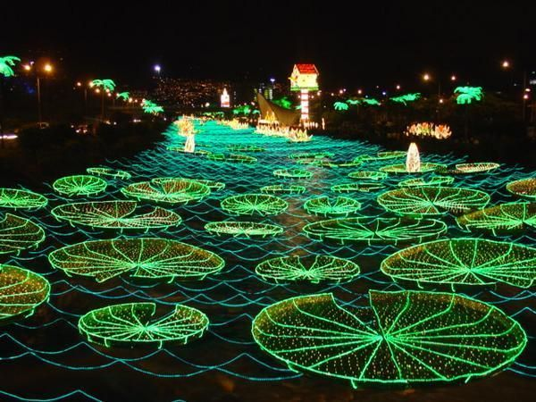 YES - lillypads made out of Christmas lights - not sure what it has to do with Christmas, but its on a river, so it makes sense.