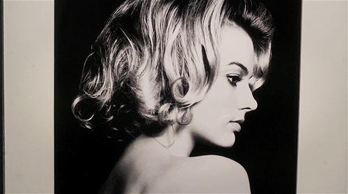 Laura Cameron. Margot Robbie. Pan Am.
