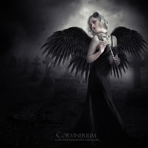 368 Best Images About Wallpaper On Pinterest: 368 Best Images About Gothic Angels On Pinterest