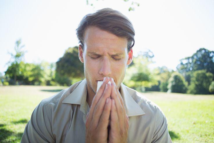 Hay Fever & Seasonal Allergies: Symptoms, Causes & Treatmentellie urso