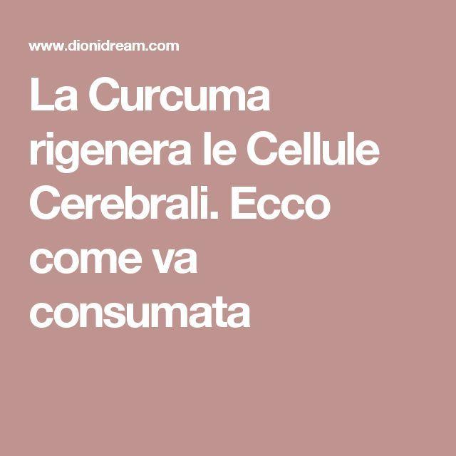 La Curcuma rigenera le Cellule Cerebrali. Ecco come va consumata