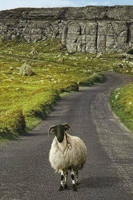 Take the road less travelled in Ireland.