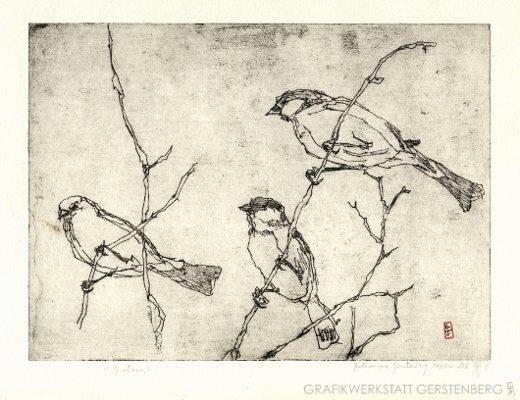 Vögel   Original-Radierung von Gerstenberg-Grafik