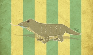 Komodo Dragon  Digital Art - 2012