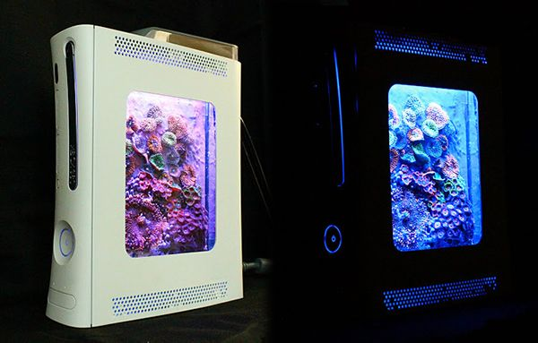 http://hacknmod.com/hack/convert-an-old-xbox-360-into-a-fish-tank/ | Convert an Old Xbox 360 into a Fish Tank | Hack N Mod