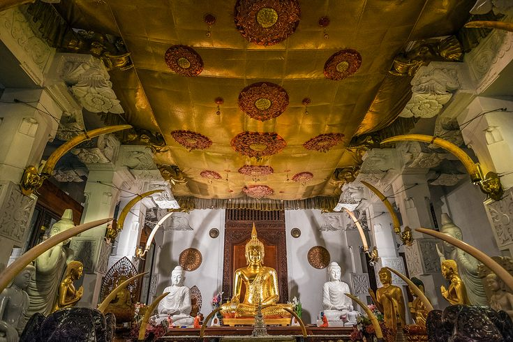 16 evocative pictures of Sri Lanka - After a couple of weeks travelling across Sri Lanka, photographer Nori Jemil shares why this Indian Ocean island is a perfect subject. Here are 16 of her favouritepictures of Sri Lanka.  From a photographer's perspective, Sri …