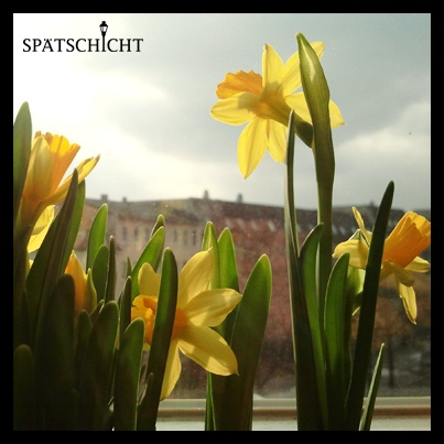 You didn't get any flowers? We have some for all of you.  Happy Valentine's Day! Spätschicht 2013