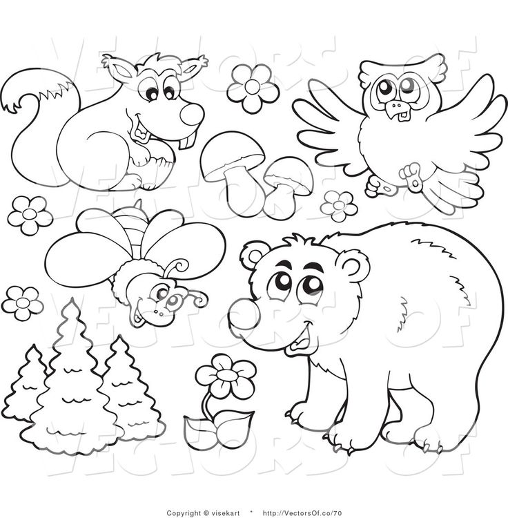 black and white forest animals coloring pages | Forest Animals Clipart Black And White Widescreen 2 HD ...
