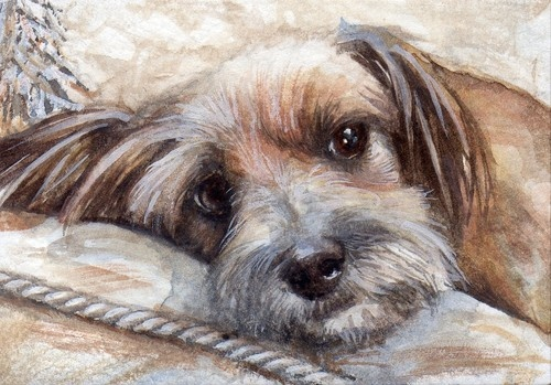 ACEO Original Dog/Puppy Painting: DOG TIRED by Chris Williams - Watercolor.