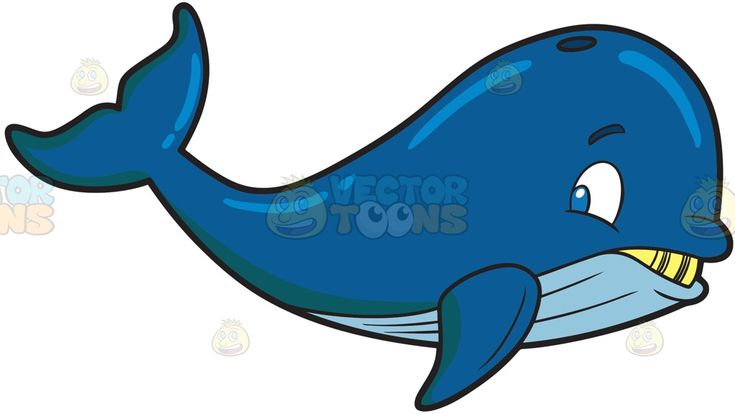 A big whale :  A blue whale with yellow teeth and big head  The post A big whale appeared first on VectorToons.com.