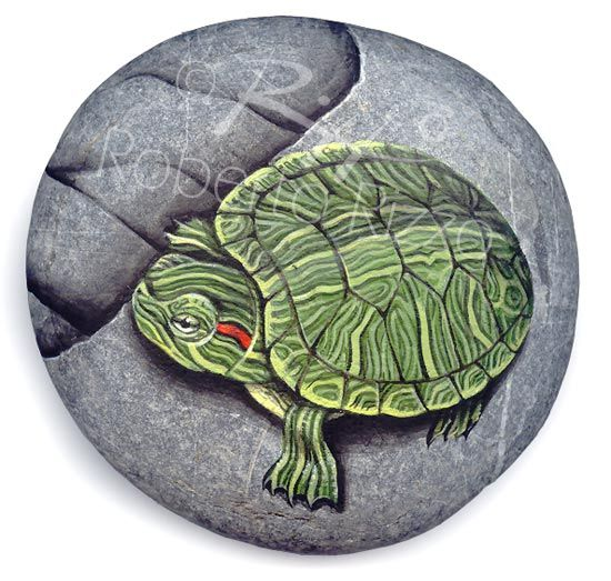 Turtle | Rock painting art by Roberto Rizzo