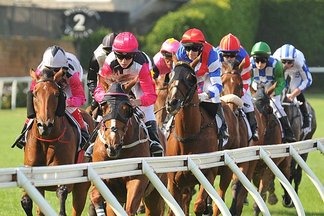 The Cleaner in 11 for Dato' hat-trick bid : Australia Horse Breeding and Racing…