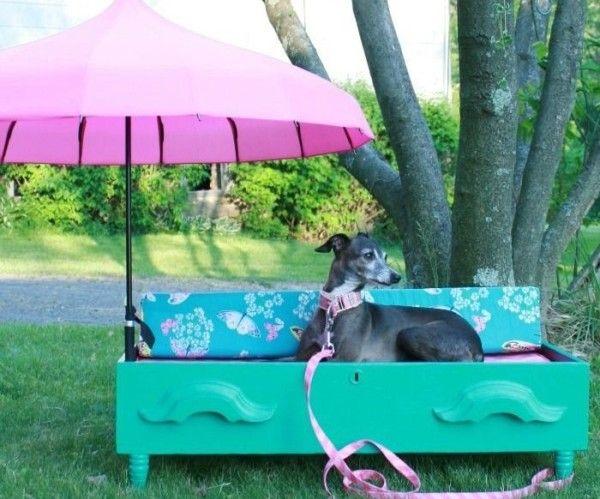 Avere un cane (o essere un dog sitter) comporta accumulare un sacco dicose per cani. Lettini, cibo/ ciotole per l'acqua, giocattoli, dolcetti, collari, guinzagli, oggetti per la toelettatura…