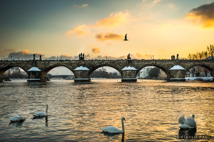 Evening Sun over Charles Bridge, Prague by Silviu Pal on 500px