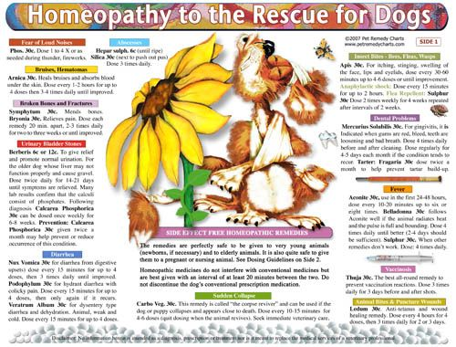 HOW TO USE HOMEOPATHY FOR DOGS -- A homeopathic treatment and dosage guide for dogs that provides detailed potency, how to dose instructions and guidance in selecting the appropriate homeopathic remedy across a wide range of dog illnesses and conditions.   http://www.petremedycharts.com/Dog%20Charts/Natural_Remedies_and_Home_Cures_for_Dogs.html