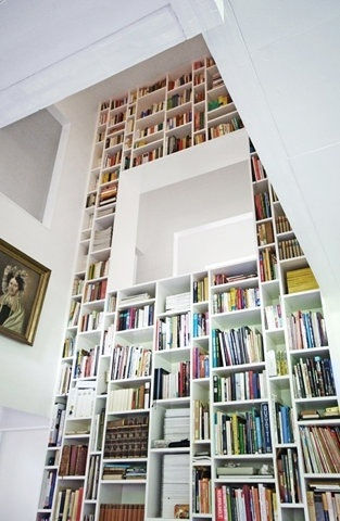 Dream library. I want a lot of books so when people come over they think I'm smart :)