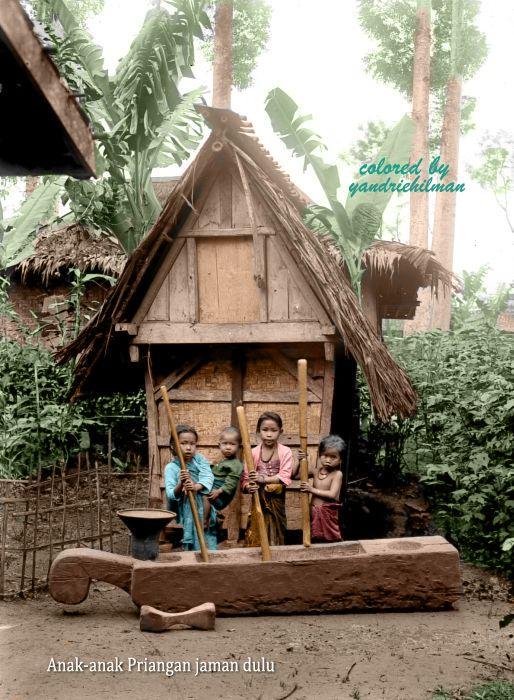 Anak-anak Priangan sedang menumbuk padi di depan leuit (lumbung padi). Diedit dari tropenmuseum.