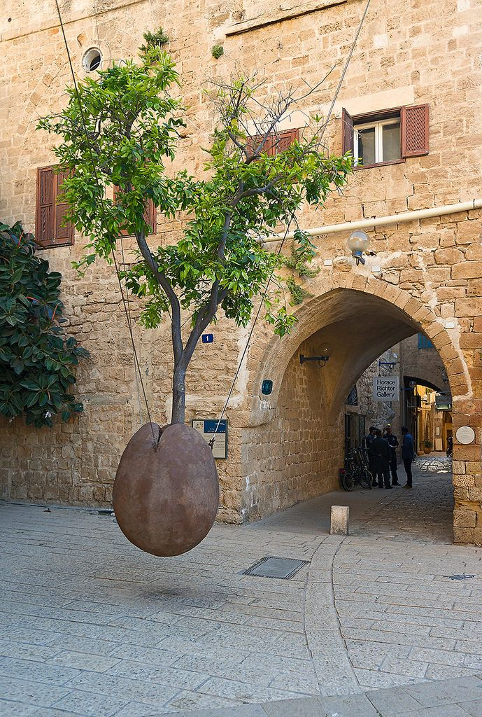 Flying Tree | Old Jaffa, Tel Aviv, Israel.                                                                                                                                                                                 More