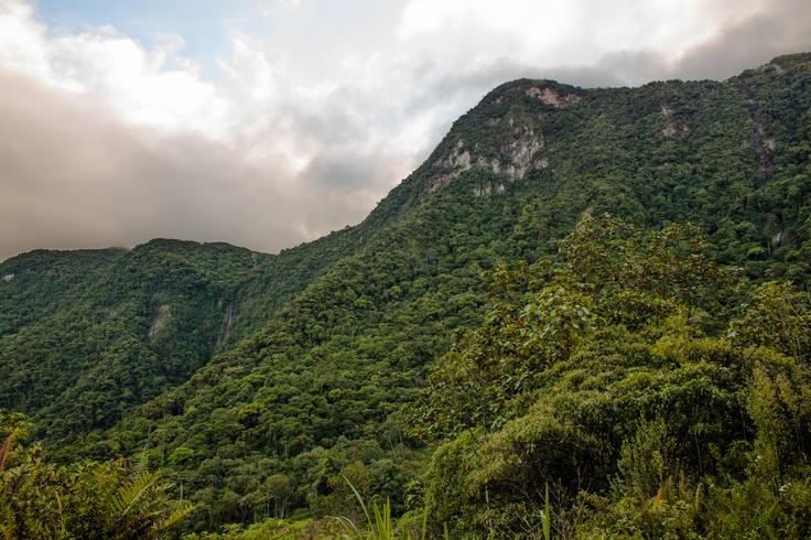 Serra do Manso interior da cidade de Jaraguá do Sul, Santa Catarina, Brasil: Das Cidades, City, City