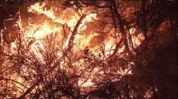 KTVU Verified account @KTVU 55m55 minutes ago #ValleyFire determined to be 6th most damaging fire in California history per @CAL_FIRE